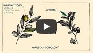 MYRTLE-OLIVE Oléoactif<sup>®</sup>